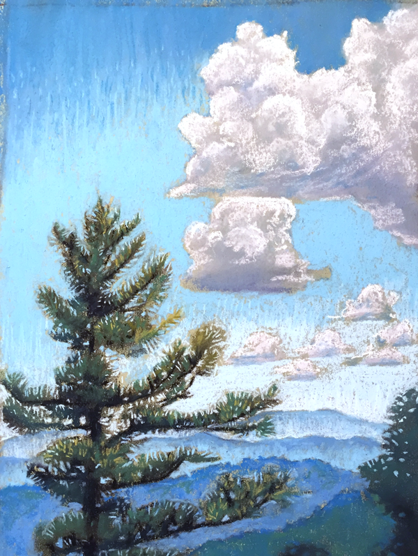 BRP #2: Pine Sings to Sky, pastel by Stephanie Berry, part of her Blue Ridge Parkway Series